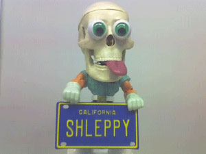 shleppy_skull1